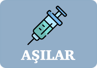 meninkokok aşısı