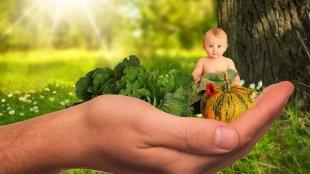 Kaç Öğün Ek Gıda Vermelisiniz?